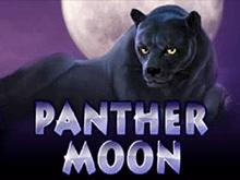 Игровые автоматы Panther Moon на деньги в казино