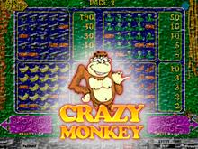 Играть бесплатно в автомат Crazy Monkey